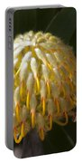 Leucospermum  -   Yellow Pincushion Protea Portable Battery Charger
