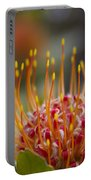 Leucospermum Pincushion Protea - Tropical Sunburst Portable Battery Charger