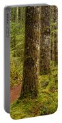 Lewis Falls Trail 2 Portable Battery Charger