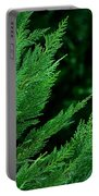 Leyland Cypress Green Portable Battery Charger