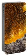 Lichen It Portable Battery Charger