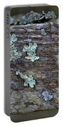 Lichen Macro II Portable Battery Charger