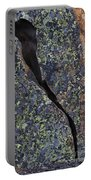 Lichen On Granite Portable Battery Charger by Heiko Koehrer-Wagner