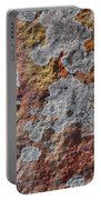 Lichen On Sandstone Portable Battery Charger