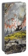 Lichen On Sea Beach Rock Portable Battery Charger