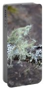 Lichens 2013 Portable Battery Charger