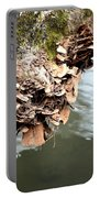 Lichens Abstract 2013 Portable Battery Charger