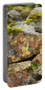 Lichens And Moss In Glen Strathfarrar Portable Battery Charger