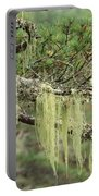 Lichens On Tree Branches In The Scottish Highlands Portable Battery Charger