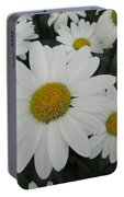 Life Blooming  Portable Battery Charger