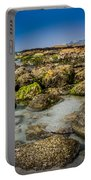 Life Clings As The Tides Ebb Portable Battery Charger
