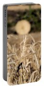 Life Cycle Of Wheat - Harvesting Portable Battery Charger