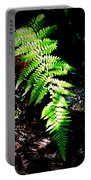 Light Play On Fern Portable Battery Charger