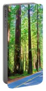 Light Through The Redwoods Portable Battery Charger