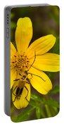 Lightning Bug On Flower Portable Battery Charger