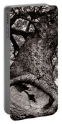 Lightning Tree  Portable Battery Charger by Trish Mistric