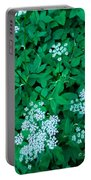 Like Queen Annes Lace Portable Battery Charger