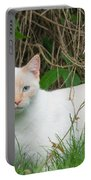 Lilac Point Siamese Cat Portable Battery Charger