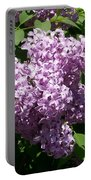 Lilac Ready For A Closeup Portable Battery Charger