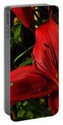 Lilies By The Water Portable Battery Charger by Randy Hall