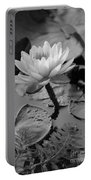 Lily Bw Portable Battery Charger