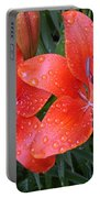 Lily Duet After The Rain Portable Battery Charger