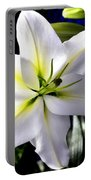 Lily Portable Battery Charger