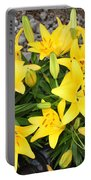 Lily Gathering Portable Battery Charger