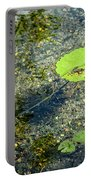 Lily Leafs On The Water Portable Battery Charger