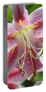 Lily Love Portable Battery Charger