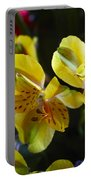 Lily Of The Incas Portable Battery Charger