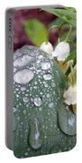 Lily Of The Valley After The Rain Portable Battery Charger
