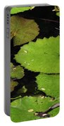 Lily Pads And Lotus Flower Portable Battery Charger