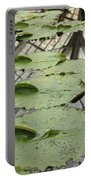 Lily Pads With Reflection Of Conservatory Roof Portable Battery Charger