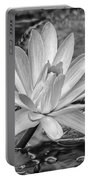 Lily Petals - Bw Portable Battery Charger