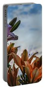 Lilys At La Fonda Portable Battery Charger