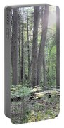 Limerick Fern Understory Portable Battery Charger