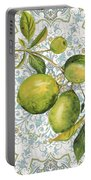 Limes On Damask Portable Battery Charger
