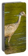 Limpkin With A Snack Portable Battery Charger