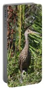 Limpkin With An Apple Snail Portable Battery Charger