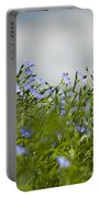 Linseed Portable Battery Charger