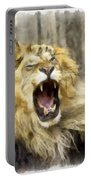 Lion 15 Portable Battery Charger