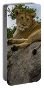 Lion   #1646 Portable Battery Charger