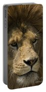 Lion-animals-image Portable Battery Charger