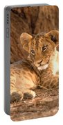 Lion Cub Panthera Leo Portable Battery Charger