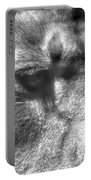 Lion Eyes Portable Battery Charger