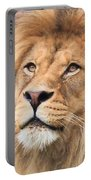 Lion In Deep Thought Portable Battery Charger