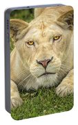 Lion In The Grass Portable Battery Charger
