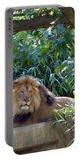 Lion King At Washington Zoo Portable Battery Charger