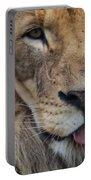 Lion Portrait Panting Portable Battery Charger